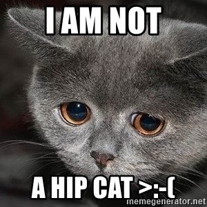 Sadcat - I am not A hip cat >:-(