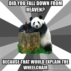 Pickup Line Panda - did you fall down from heaven? Because that would explain the wheelchair