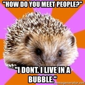 """Homeschooled Hedgehog - """"How do you meet people?"""" """"I dont. I live in a bubble."""""""