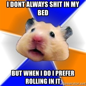 Hamster - I dont always shit in my bed but when i do I prefer rolling in it