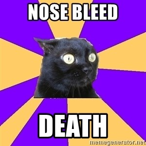 Anxiety Cat - nose bleed death