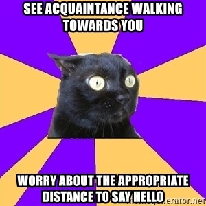 Anxiety Cat - see acquaintance walking towards you worry about the appropriate distance to say hello