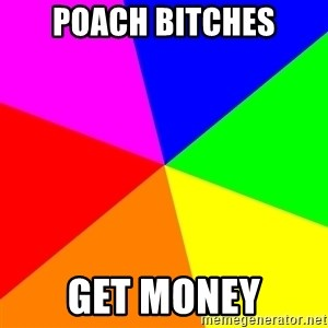 advice background - Poach Bitches Get money