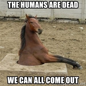 Hole Horse - the humans are dead we can all come out