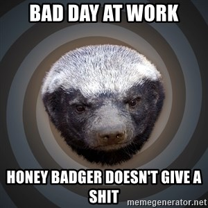 Fearless Honeybadger - bad day at work honey badger doesn't give a shit