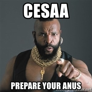 Mr T Fool - cesaa prepare your anus