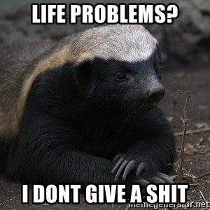 Honey Badger - Life problems? I DONT GIVE A SHIT