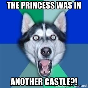 Spoiler Dog - the princess was in  another castle?!