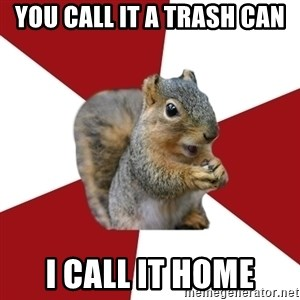 Temple Squirrel - YOu call it a trash can I call it home