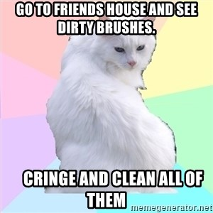 Beauty Addict Kitty - Go to friends house and see dirty brushes.     cringe and clean all of them