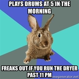 Roommate Rabbit - plays drums at 5 in the morning freaks out if you run the dryer past 11 pm