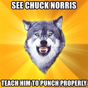 Courage Wolf - see chuck norris teach him to punch properly