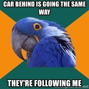 Paranoid Parrot - car behind is going the same way they're following me