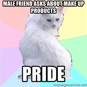 Beauty Addict Kitty - male friend asks about make up products pride