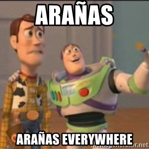 X, X Everywhere  - ARAÑAS ARAÑAS EVERYWHERE