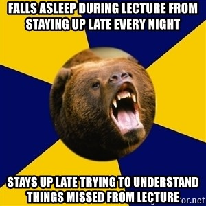 Berkeley Student Bear - Falls asleep during lecture from staying up late every night Stays up late trying to understand things missed from lecture
