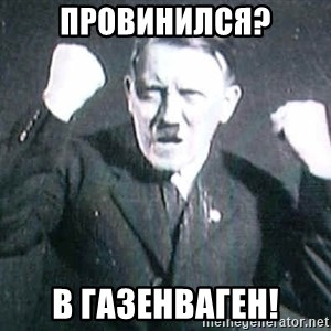 Successful Hitler - провинился? в газенваген!