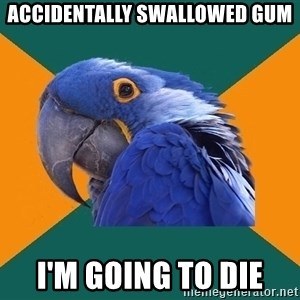 Paranoid Parrot - accidentally swallowed gum i'm going to die