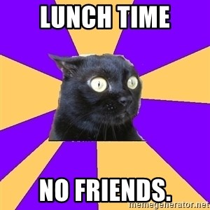 Anxiety Cat - lunch time no friends.