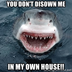 Insanity Shark - YOU DON'T DISOWN ME IN MY OWN HOUSE!!