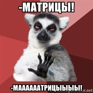 Chill Out Lemur - -Матрицы! -Маааааатрицыыыы!
