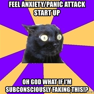 Anxiety Cat - feel anxiety/panic attack start up oh god what if i'm subconsciously faking this!?