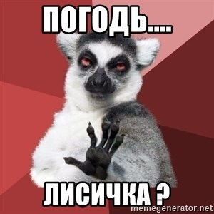 Chill Out Lemur - погодь.... лисичка ?