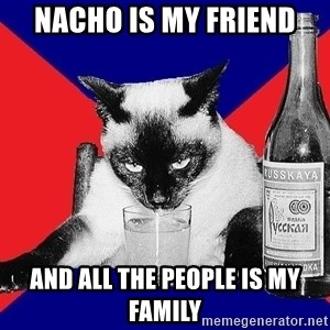 Alco-cat - NACHO IS MY FRIEND AND ALL THE PEOPLE IS MY FAMILY