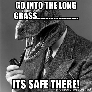 Philosoraptor - GO into the long grass......................... its safe there!