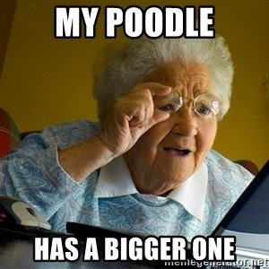 Internet Grandma Surprise - my poodle has a bigger one
