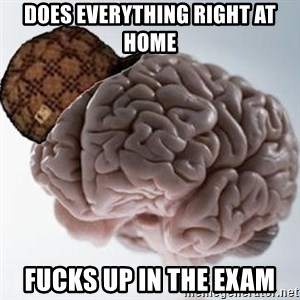 Scumbag Brain - Does everything right at home fucks up in the exam