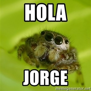 The Spider Bro - hola jorge
