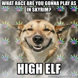 Stoner Dog - What race are you gonna play as in skyrim? high elf