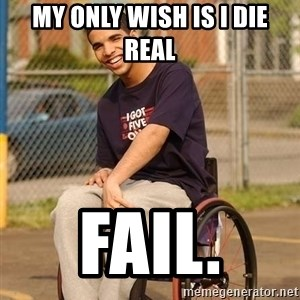 Drake Wheelchair - My only wish is I die reaL FAIL.