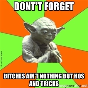 vk.com/yoda_advice - Dont't forget bitches ain't nothing but hos and tricks