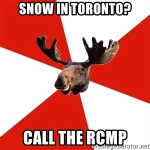 Stereotypical Canadian Moose - snow in toronto? call the rcmp