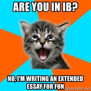 Ib Kitten - Are you in IB? no, I'm writing an extended essay for fun