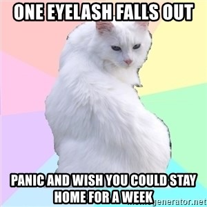 Beauty Addict Kitty - one eyelash falls out  panic and wish you could stay home for a week
