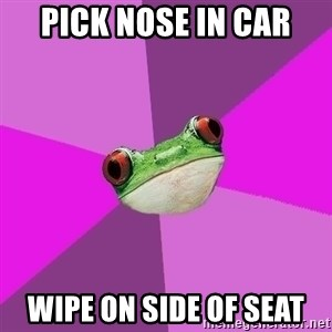 Foul Bachelorette Frog - pick nose in car wipe on side of seat