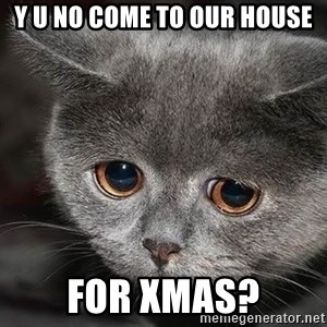 sad cat - Y U NO come to our house for xmas?