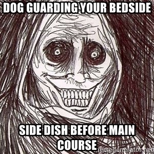 Horrifying House Guest - dog guarding your bedside side dish before main course