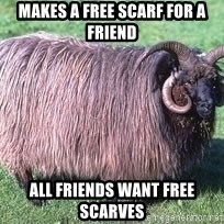 Churro Sheep Wouldn't - makes a free scarf for a friend all friends want free scarves