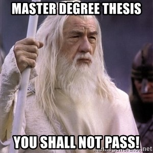 White Gandalf - MASTER DEGREE THESIS YOU SHALL NOT PASS!
