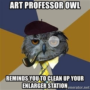 Art Professor Owl - Art professor owl reminds you to clean up your enlarger station