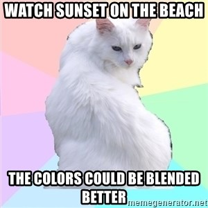 Beauty Addict Kitty - Watch sunset on the beach The colors could be blended better
