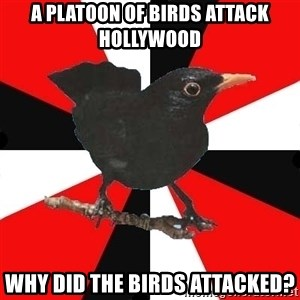 Socionic Bird - A platoon of birds attack hollywood why did the birds attacked?