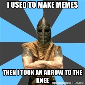 Unfortunate Guard - I used to make memes then i took an arrow to the knee