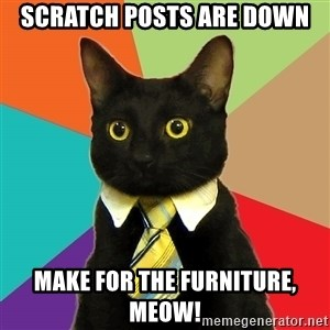 Business Cat - scratch posts are down make for the furniture, meow!