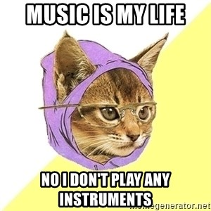 Hipster Kitty - music is my life No i don't play any instruments