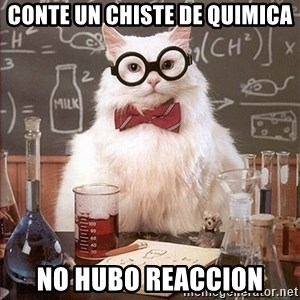 Science Cat - conte un chiste de quimica no hubo reaccion